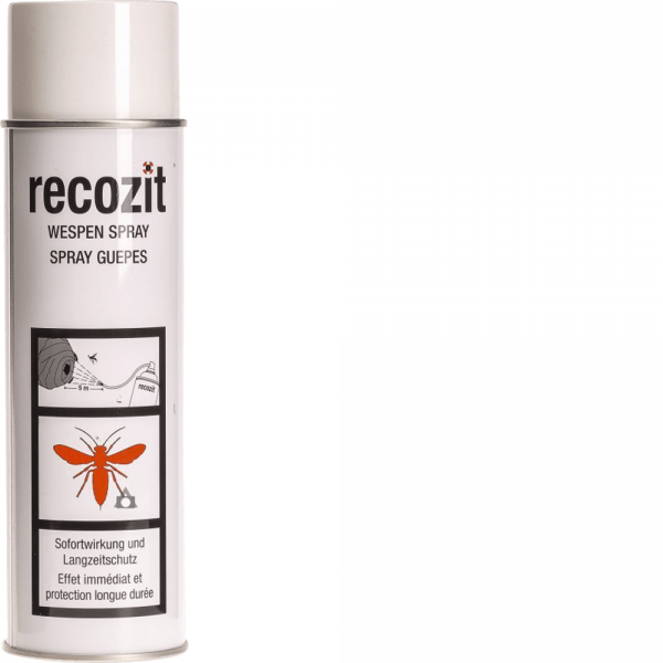 RECOZIT Wespen Spray