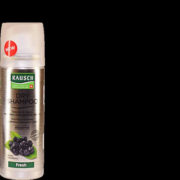 RAUSCH DRY SHAMPOO Fresh Aeros Spray